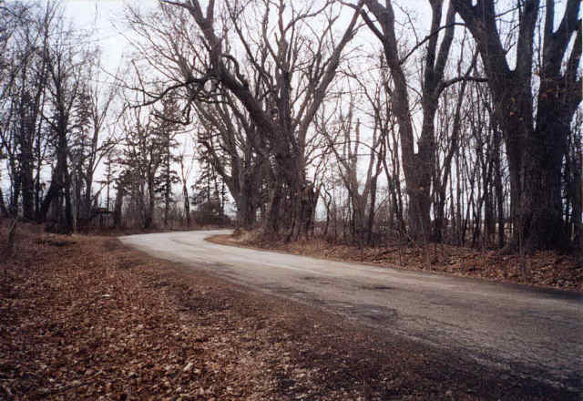 Witch Road, Haunted place in Wisconsin