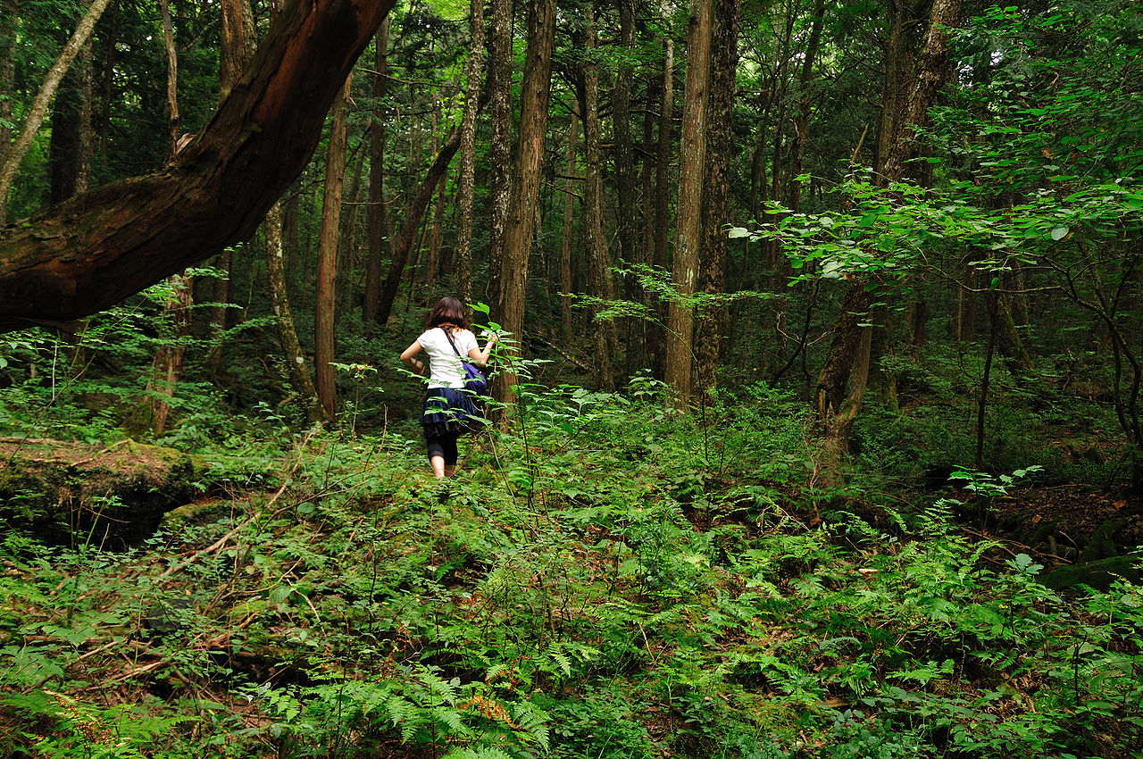 aokigahara forest, most haunted places