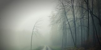 Creepiest roads, Illinois